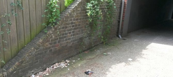 garden rubbish removal in Parsons Green x4