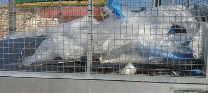 yard waste collection W1 x3
