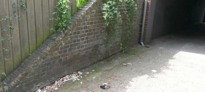 get rid of garbage near South Ealing x2